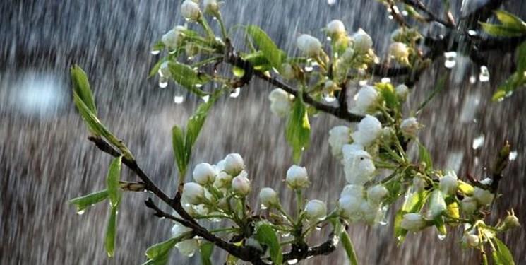 باران بهاری و کاهش ۱۲ درجهای دمای هوا از دوشنبه در گیلان
