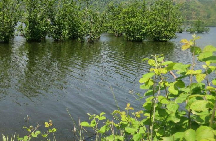 تالاب استیل و آب بندان های آستارا آماده جذب سرمایه گذار است
