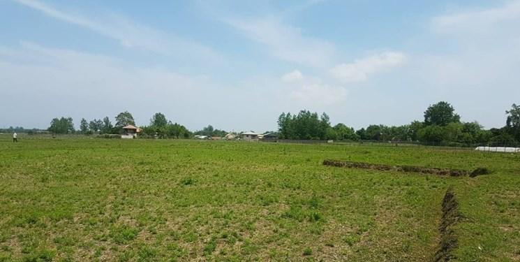 روایتی از بیآبی در مزارع ماسال/ مسؤولان به داد کشاورزان برسند