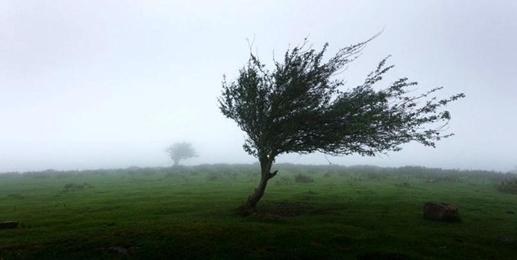 پیشبینی وزش باد شدید در گیلان/هوا تا ۱۰ درجه گرم میشود