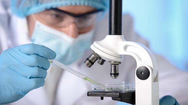 ۳ دانشمند گیلانی جزو یک درصد دانشمندان برتر جهان