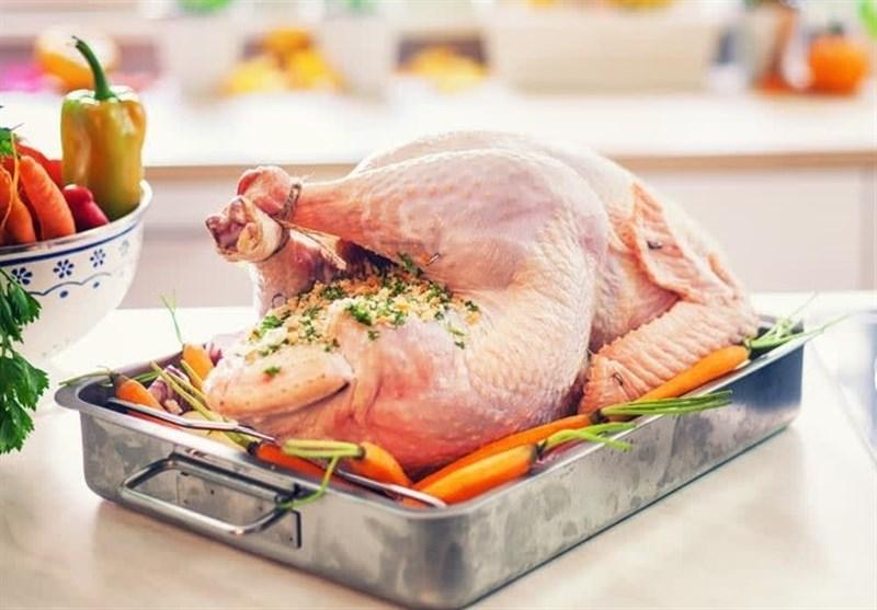 ۷۵۰ تن گوشت بوقلمون سال گذشته در گیلان تولید و روانه بازار مصرف شد