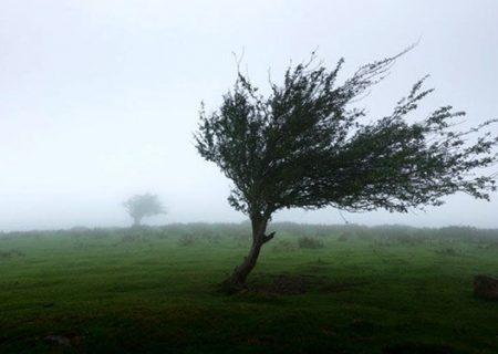 پیشبینی وزش باد گرم شدید در گیلان/ هوا تا ۱۶ درجه گرم میشود